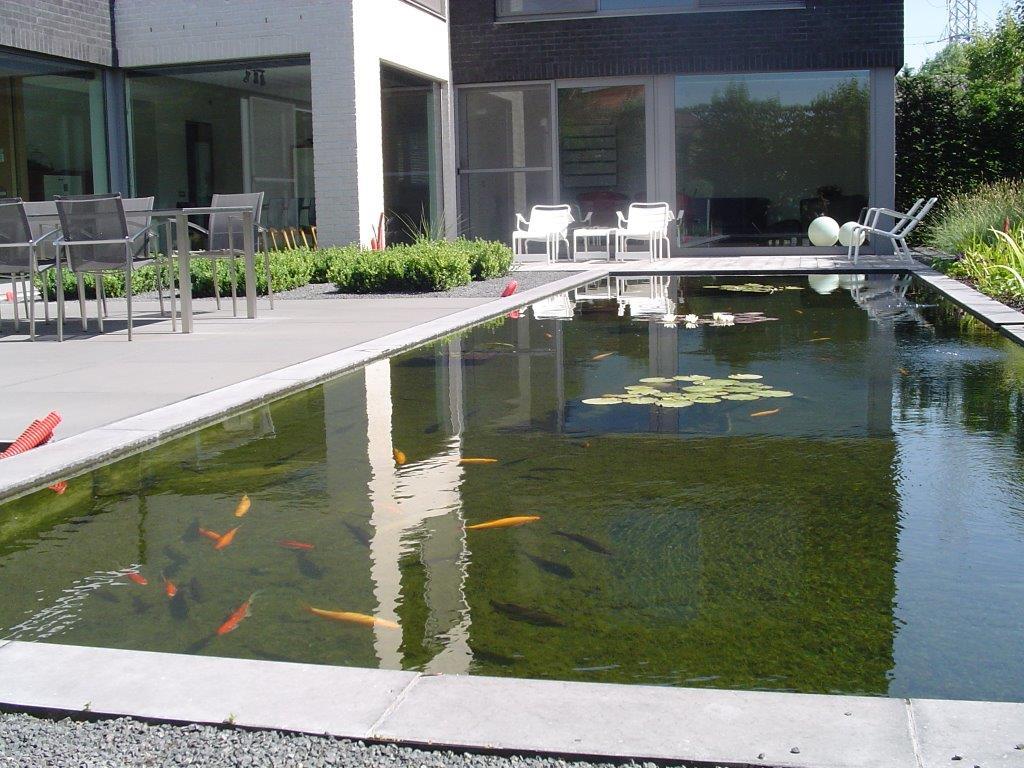 Grote Moderne Tuin : De natuurlijke combinatie aanleg en ontwerp tuinen