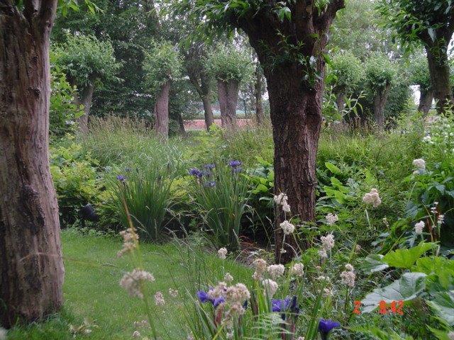 De natuurlijke combinatie aanleg en ontwerp tuinen for Tuinontwerp natuurlijke tuin